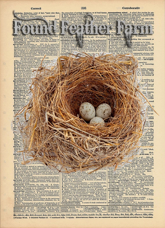 """Vintage Antique Dictionary Page with Antique Print """"The Nest"""""""