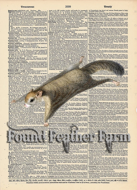 """Vintage Antique Dictionary Page with Antique Print """"Flying Squirrel"""""""