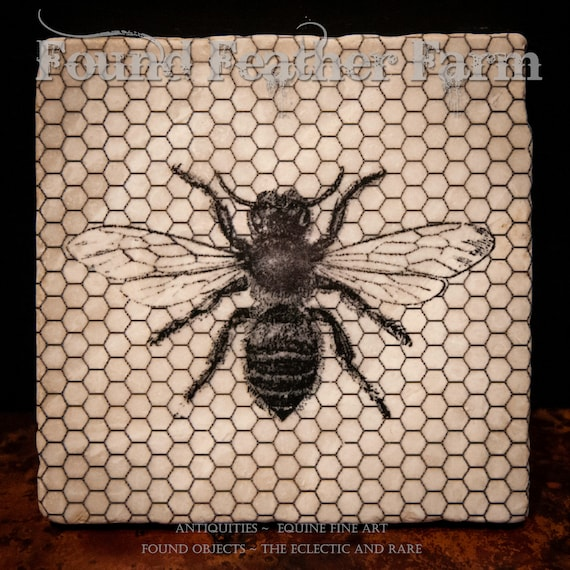Tumbled Stone Beverage Coasters with Vintage Honey Bee and Comb Image