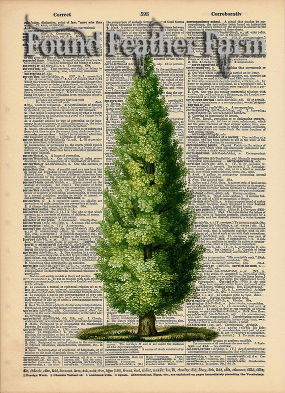"""Vintage Antique Dictionary Page with Antique Print """"The Towering Tree"""""""