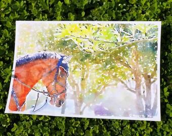 "Fine Art Print | ""Spring Equine"" | Watercolor Effect | Equestrian Art | Home Decor | Equestrian Home Decor"