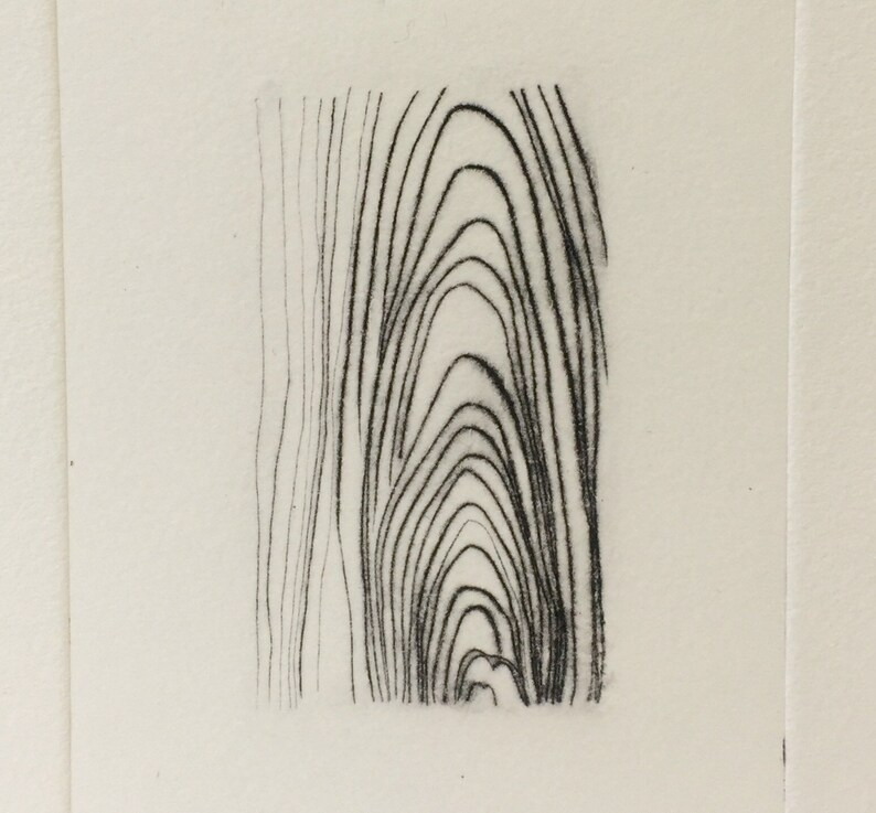 Yellow Birch drypoint wood grain pattern etching image 0