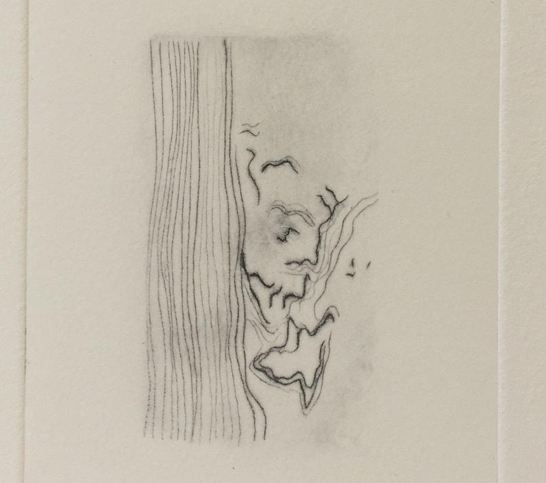 White Oak  drypoint wood grain pattern etching image 0