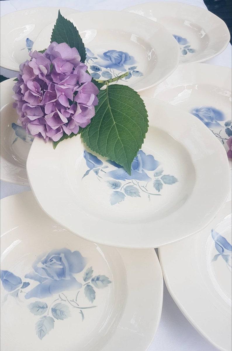 8 hollow plates Digoin Sarreguemines Blue Rose pattern Porcelain Model Cannes Vintage tableware Made in France Vintage tableware