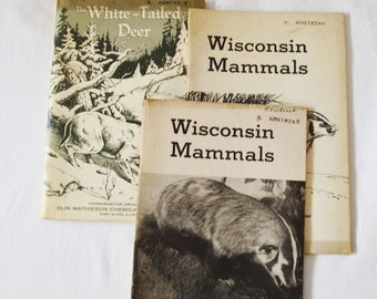 Vintage Wisconsin And Illinois Conservation Books About Mammals And White Tailed Deer