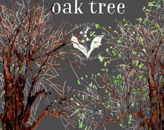 Woodland Clipart Handpainted Watercolor Tree Png