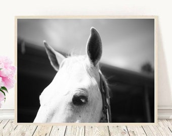 Horse Art, Horse Print, Black And White Horse Photo, Printable Art,  Digital Download, Wall Art, Home Decor