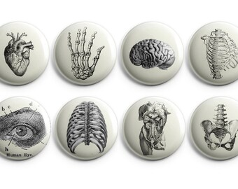 Prickly Cactus Collage