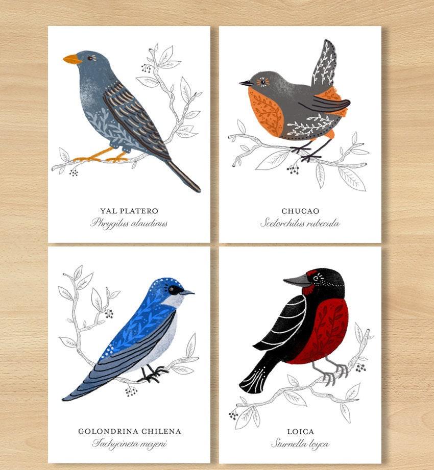 Bird postcards, exotic birds mini print, animal decor, bird postcard set,  print bundle