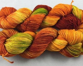 hand dyed sock yarn, superwash merino and nylon, fingering weight, colorway SPICE RACK