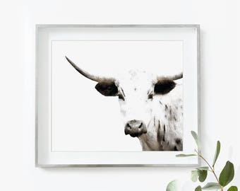 Cow Print, Cow Art, Longhorn, Cow Watercolor, Cow Painting, Nursery Wall Art, Cow Gift, Printable Art, Large Wall Art, Cow Poster