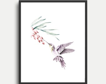 Hummingbird Art Print - Watercolor Bird Nursery Decor