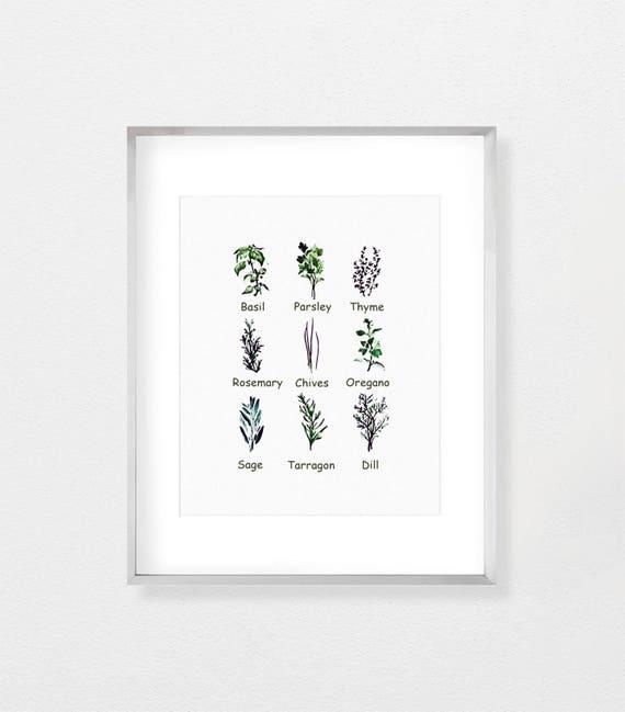 Botanische kunst keuken kruiden decor van de keuken keuken for Kunst keuken