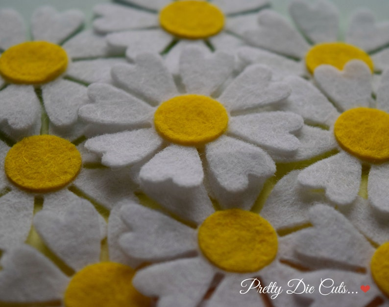 Felt Daisies White and Yellow Daisy Spring Flower image 0
