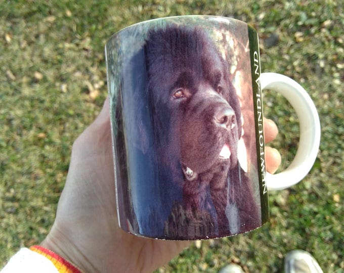 Newfoundland Ceramic Dog Mug Vintage Barbara Augello 1994 Express Corp Dog Lover Gift New Foundland Dog Gift