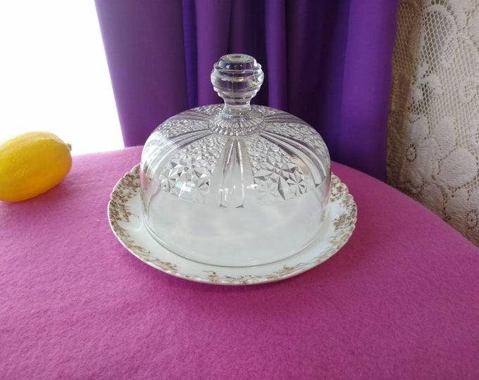 Limoges Porcelain Plate With Ornate Pressed Glass Cloche Cover Daisy Pattern France China