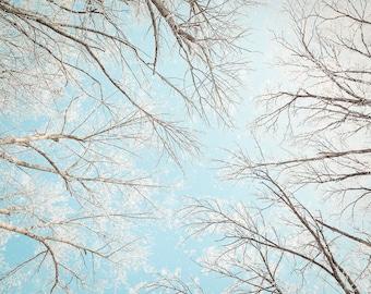 Dreamy Winter Art, Snow Photography, Winter Home Decor, Teal Wall Art, Bedroom Wall Decor, Bathroom Art, Holiday Wall Art, Winter Canvas Art