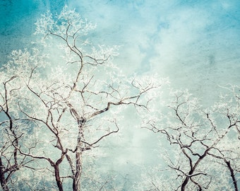 Teal Canvas Art, Snowy Winter Landscape, Turquoise Wall Art, Modern Art Canvas, Winter Photography, Hoar Frost, Snow, Tree Photograph