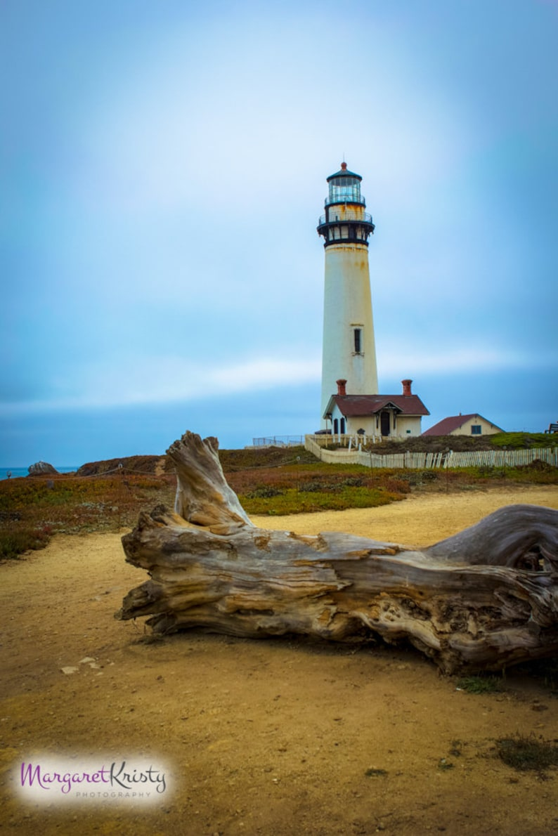 Lighthouse with Large Driftwood  ocean coast California image 0