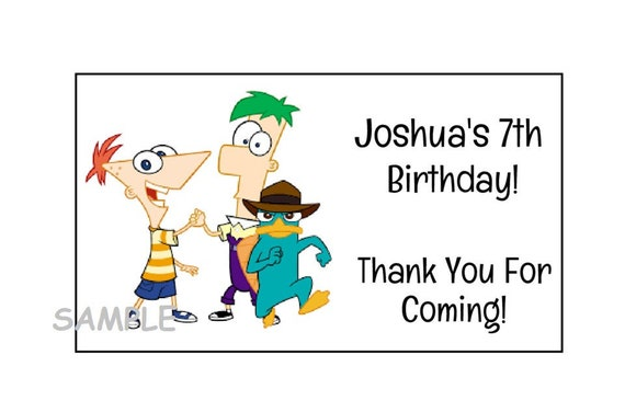 Phineas and Ferb Personalized Birthday Party Favor Gift T-Shirt NEW
