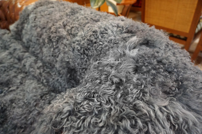 Couverture en fourrure d'agneau gris, lève de fourrure, fourrure de Rex, couverture en fourrure véritable, véritable fourrure jeter, pendaison de crémaillère cadeau F1009