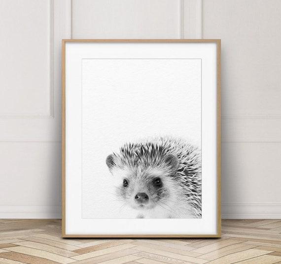 Baby Koala print.Nursery Wall Art.Woodland Decor.Animal Prints.Wall Poster.044