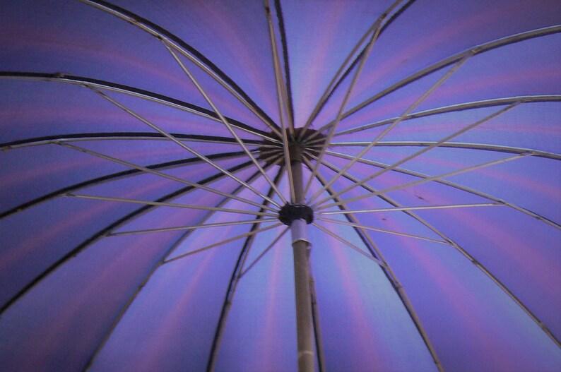 Nylon Umbrella Parrot Umbrella Polan Katz Co Umbrella Vintage Umbrella Bird Umbrella Lucite Handle Gift for Her Tropical Bird Parasol