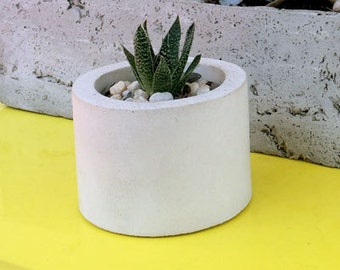 Minimalist Succulent Pot