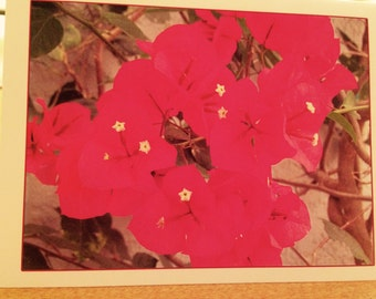 Red/pink Flower Greeting Cards