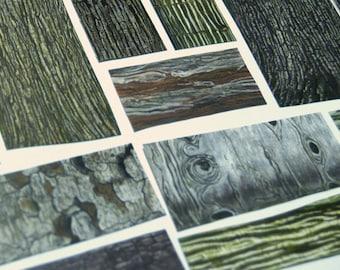 bark tree texture etsy