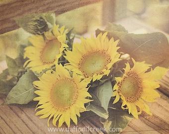 Sunflower Wall Art, Country Home Decor, Sunflower Canvas, Farmhouse Wall Art,  Photo