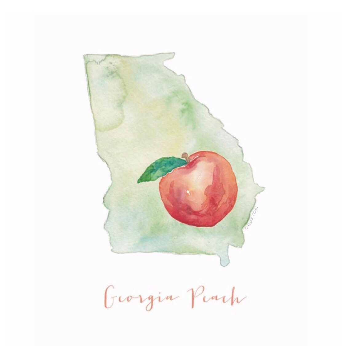 Georgia Peach Print matted and ready to be framed in a standard 11 x ...