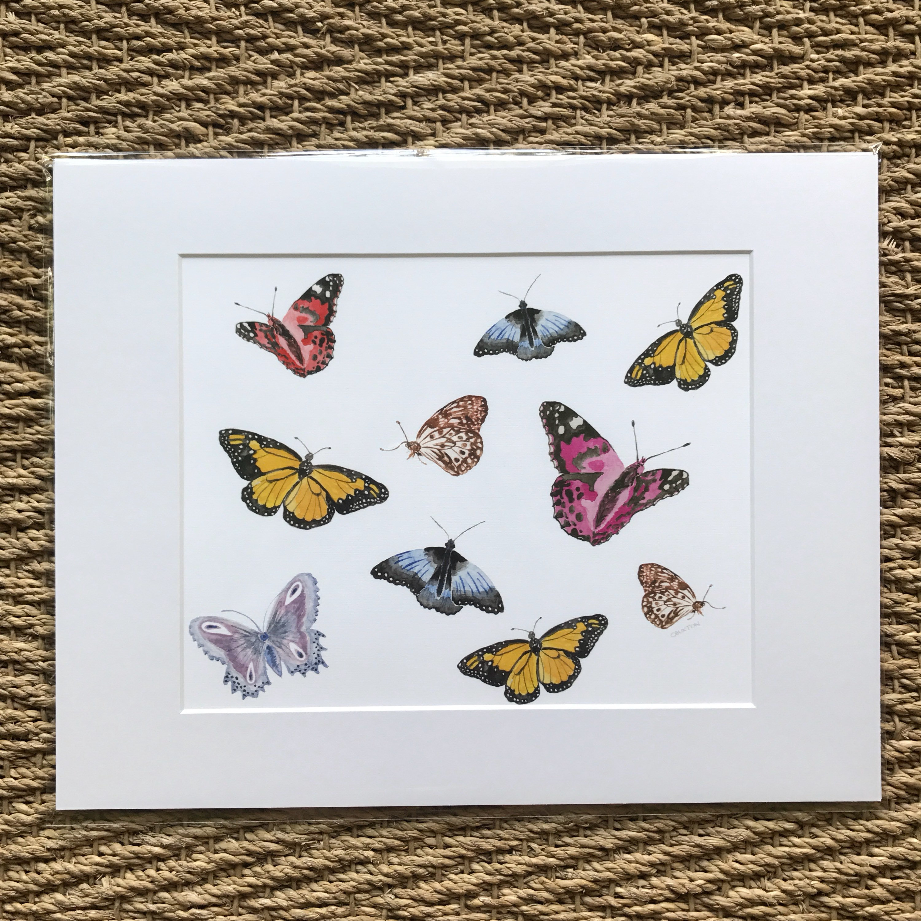Flora and Fauna Prints. Prints matted and ready to be framed in a ...