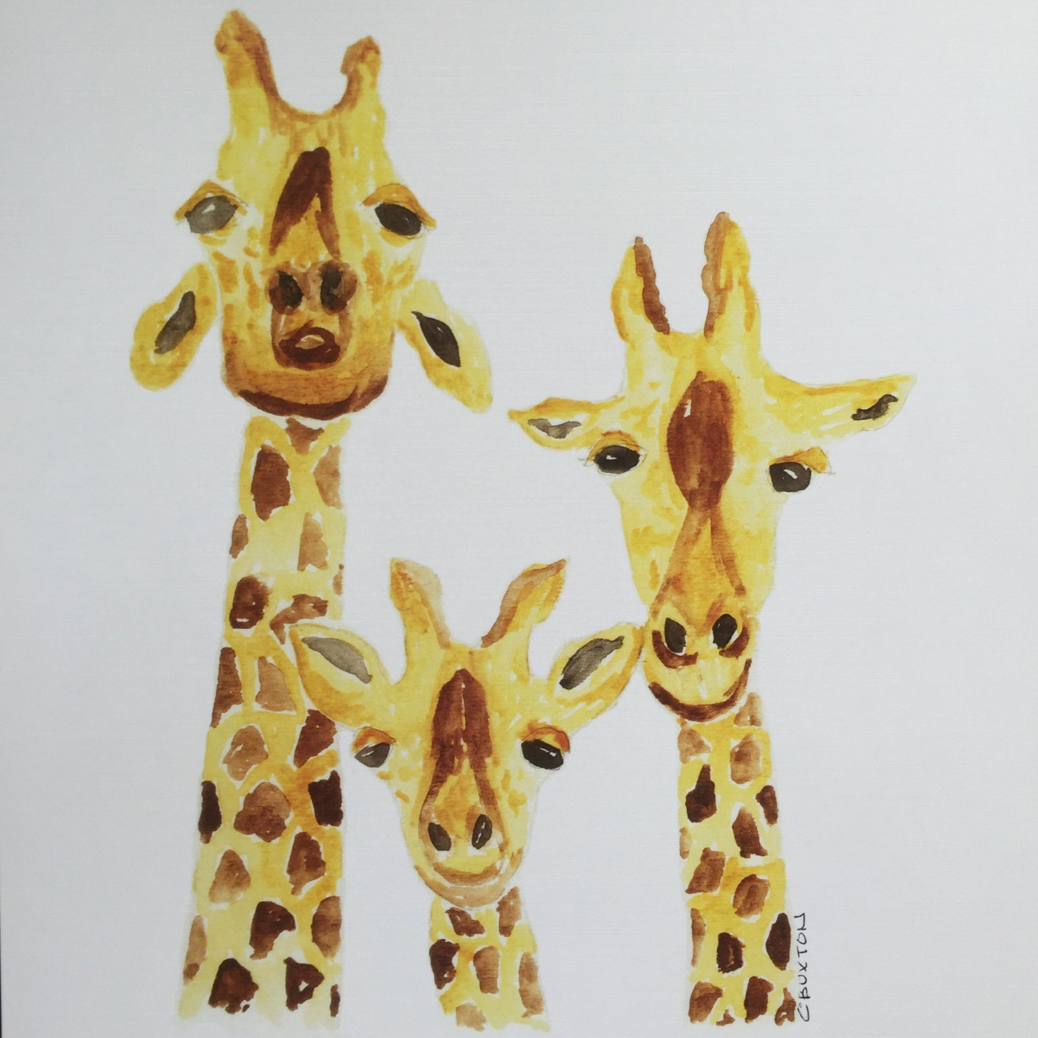 Giraffe Print, Prints matted and ready to be framed in a standard 11 ...