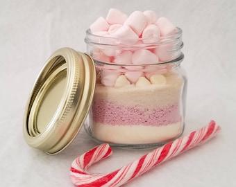 Strawberry Hot Cocoa Mix