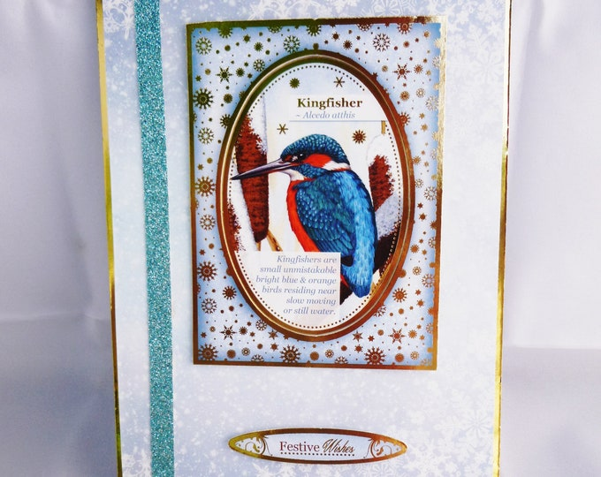 King Fisher Christmas Card, Seasons Greeting, Festive Wishes, Festive Greetings, Christmas Greetings