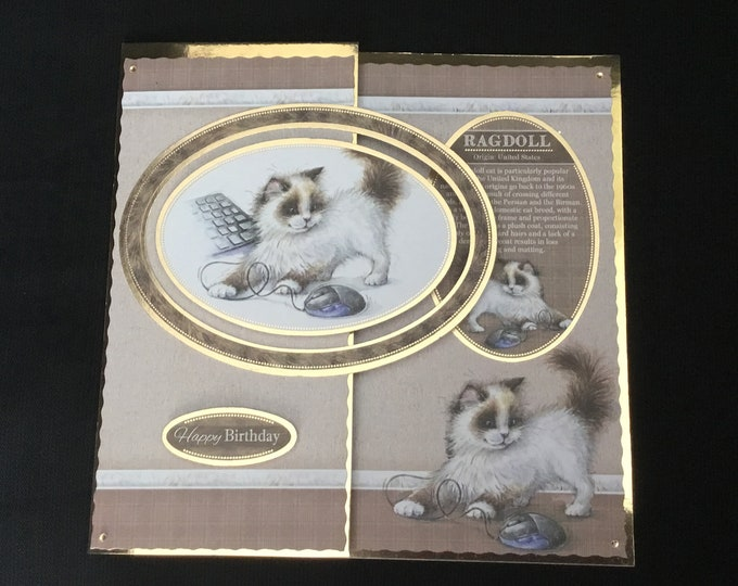 A Ragdoll Cat Card, Animal Card, Cat Card, Happy Birthday Card, Especially For You, Special Birthday, Special Day Card, Handmade In The UK