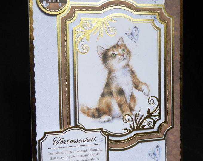 Kitten Card, Cat Card, Animal Card, Tortoiseshell Cat Card, Thinking Of You Card, Handmade Card, Especially For You Card, Special Day Card