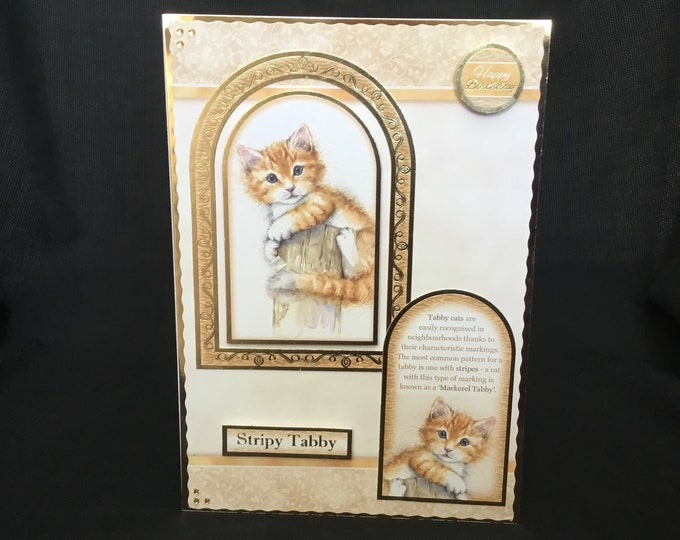 A Ginger Kitten Card, Cat Card, Animal Card, Stripy Tabby Card, Especially For You, Special Birthday, Special Day Card, Handmade In The UK