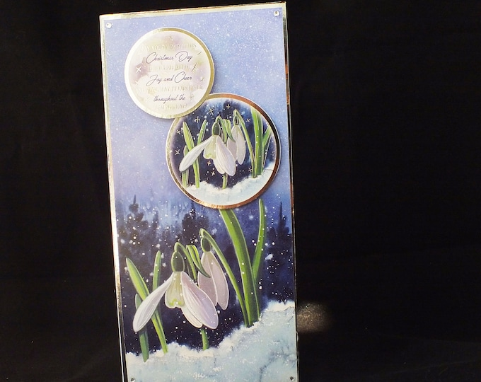 Snow Drops In The Snow, Christmas Greeting Card, Floral Card, White Flowers, Festive Card,  DL Size Card,