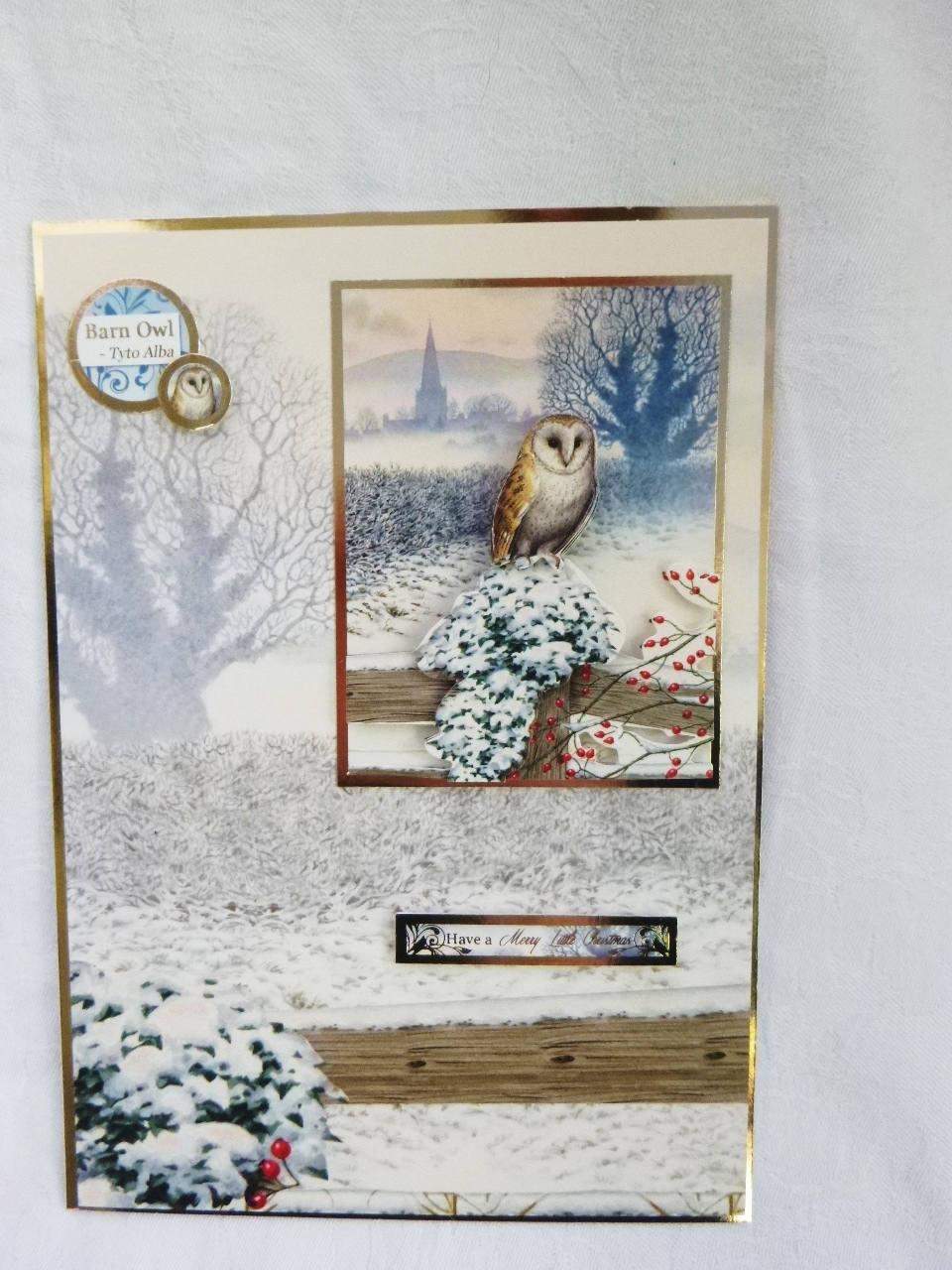 Owl Christmas Card, Greeting Card, 3 D Decoupage, Winter Scene, Owl ...