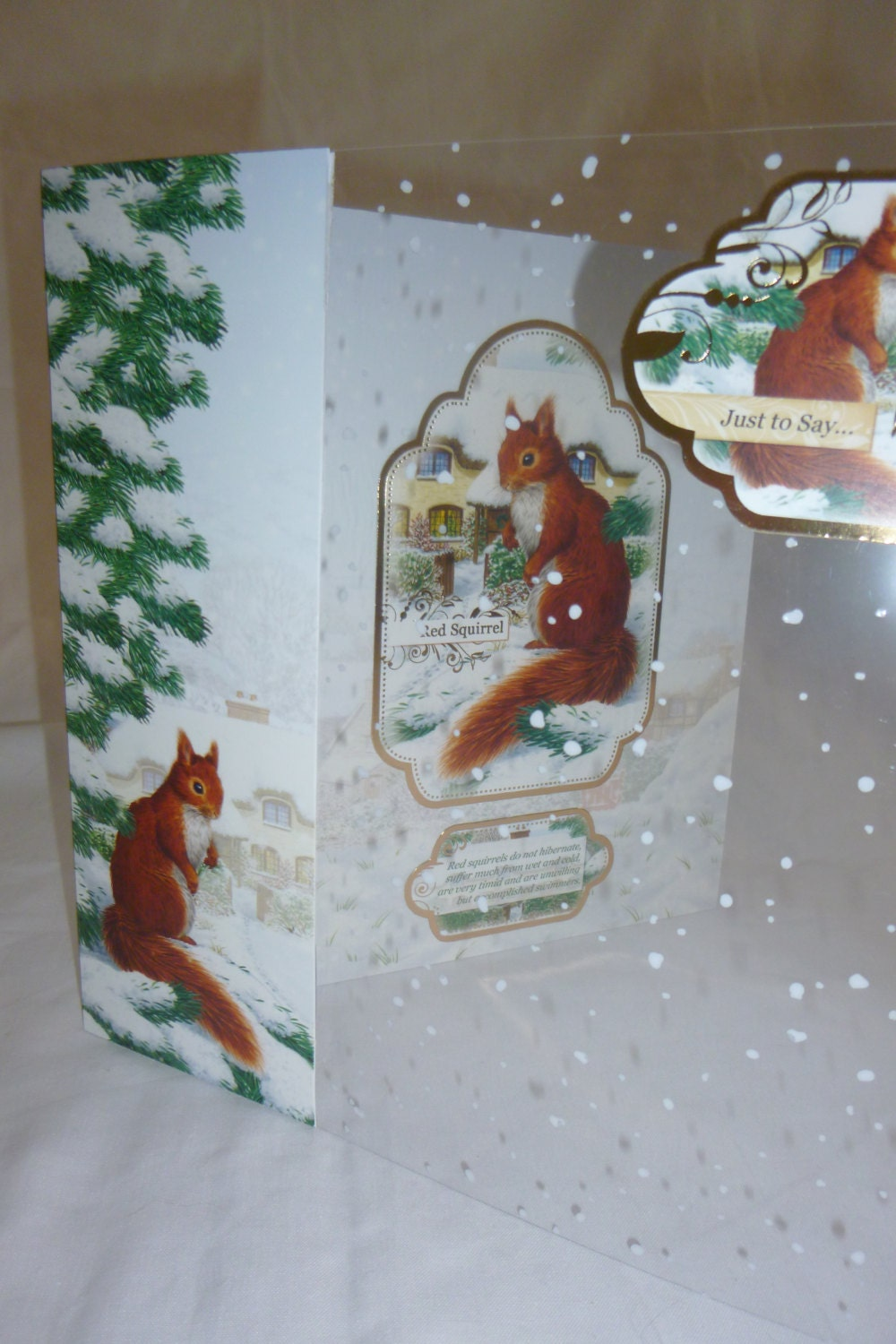 Nature Christmas card, Greeting card, winter scene, red squirrel ...