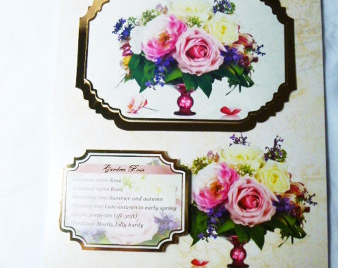 English Roses, Birthday Card, Garden Rose, Greeting Card, Especially For You, Special Day Card, Handmade In The UK,Cream  and Gold,
