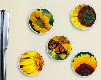 Sunflower Glass Magnets - Fridge Magnet, Office Decor, Gift Under 10, Storage, Flower, Gardening, Gardner, Garden, Sun Flower, Flowers