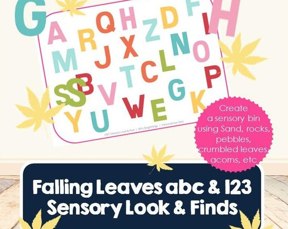 ABC + 123 Sensory Look & Find Sets - Falling Leaves Collection