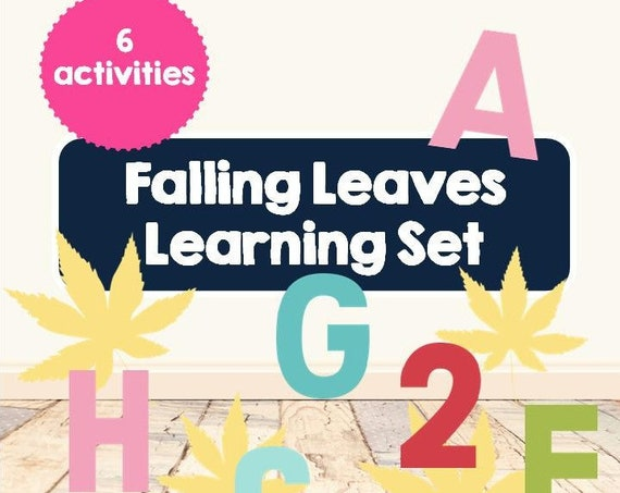 Falling Leaves Learning Set | abc's | 123's | alphabet | numbers | sight words | dolch flashcards | sensory play | colors | preschool