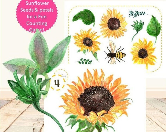 Sunflower Learning Set