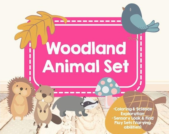 Woodland Animal Set