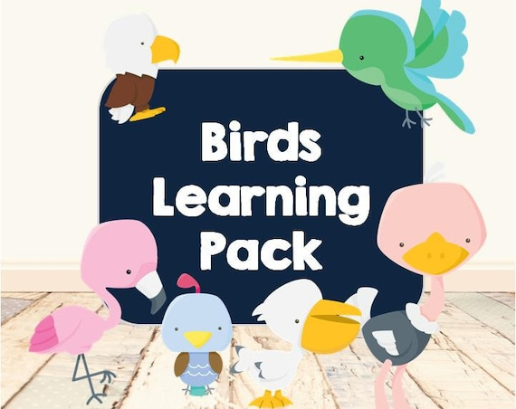 Birds Learning Pack