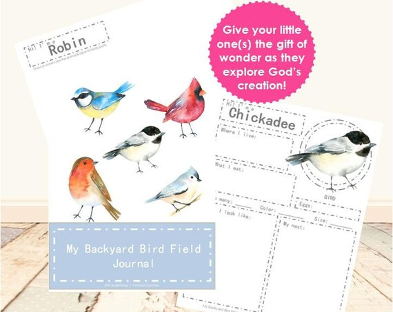 My Backyard Bird Field Journal
